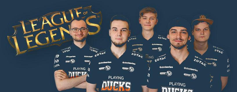 Fünf Enten verlassen die Kluft